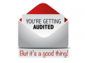 /IMG/232/293232/youre-getting-audited-1-370x229