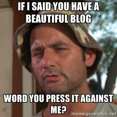 If I Said You Have a Beautiful Blog...