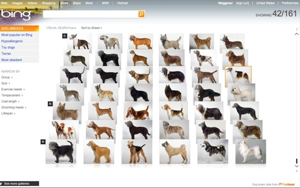 bing-visual-search-dog-breeds